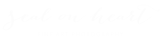 Seal on Heart Photography
