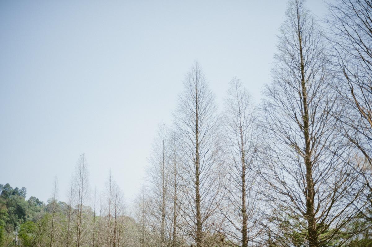 美式婚紗-黛安莊園-SealonHeart-0001