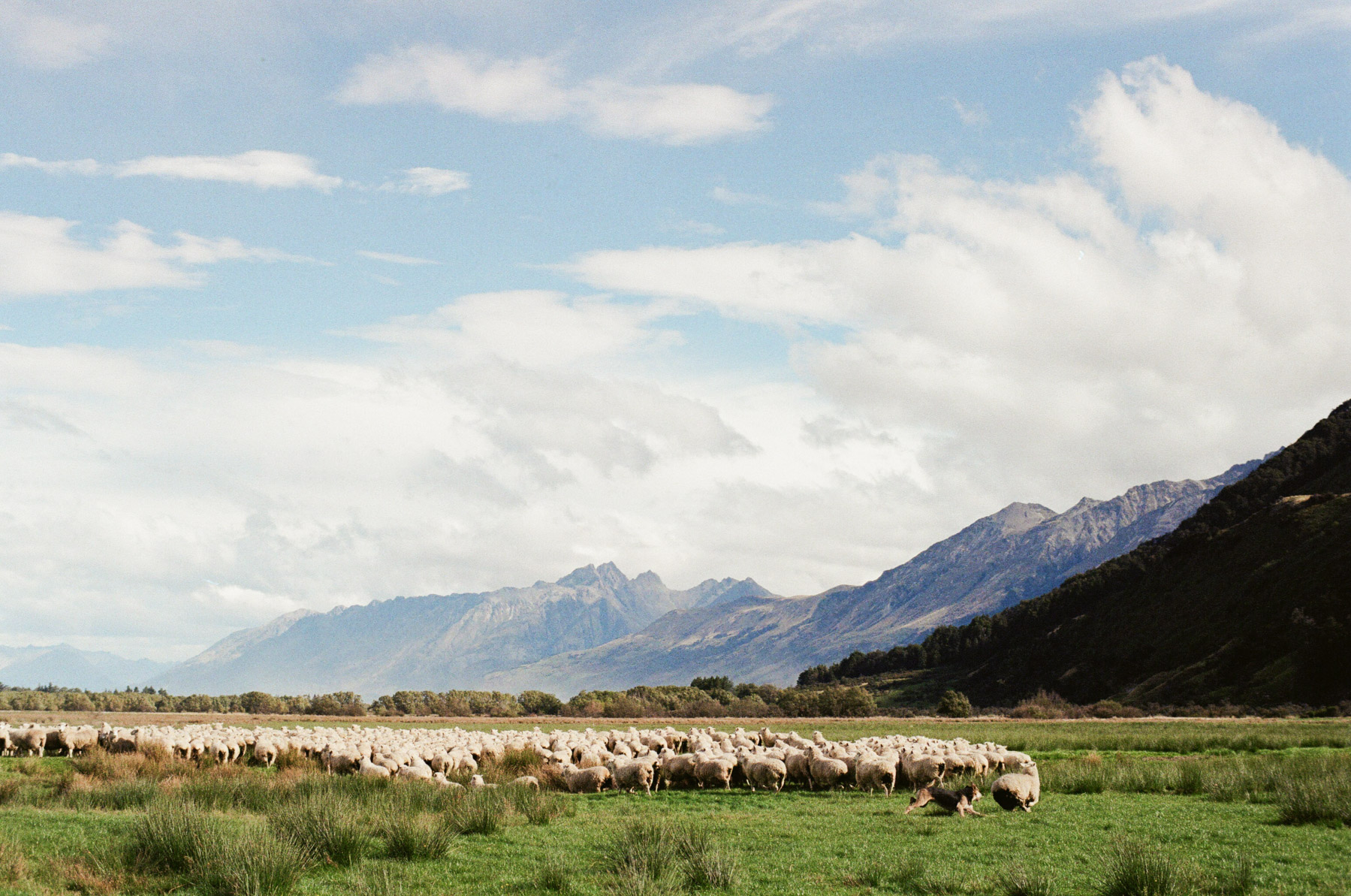 Glenorchy-Paradise Rd